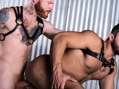 Ginger Bred daddy gay porn